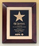 Cherry Finish Wood Frame Star Plaque Achievement Award Trophies