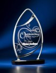 Pinnacle Satin Wired Clear Acrylic Award Achievement Award Trophies