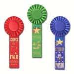 Scholastic Rosette Award Ribbon Volleyball Trophy Awards